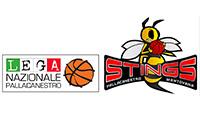 sport_marketing_pallacanestro_stings