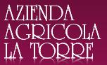 77_1_077_logo_Pasini_la_Torre