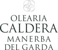 olearia caldera